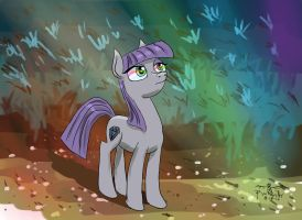 Maude Pie sees a sonic rainboom in the sky by Pwnyville