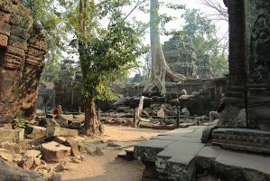 Ta Prohm by Makadjamba