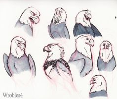 Eagle Sketches by wrobles4