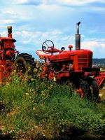 Red Tractor by ladylovely530