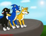 Request: Sonic, Tails, and Shadow as Wolves by Mytokyokitty