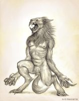 Werewolf Sketch by KatePfeilschiefter
