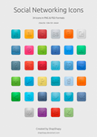 Social Networking Icons by shapshapy