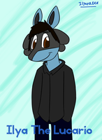 why am I a Lucario by IlyaRacer