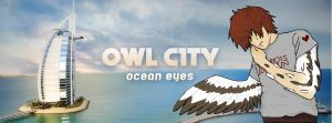 Owl City FB Cover 2 by KTechnicolour