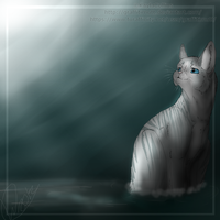 Sliverstream of RiverClan by GraffitiMutt