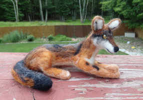 Needle Felted Eastern Coyote Soft Sculpture by DancingVulture