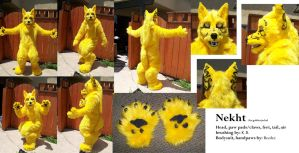 Nekht - the golden jackal by Fleech-Hunter