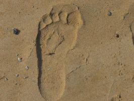 Sand Footprint by BlackFireDesign