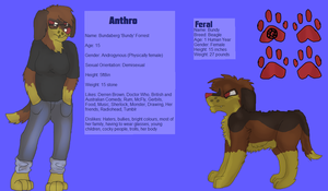 Bundy Reference Sheet 2013 NOW WITH ADDED PAWPADS by raspberryfluff