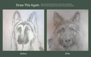 German Shepherd [2011 / 2012] by 0glOk