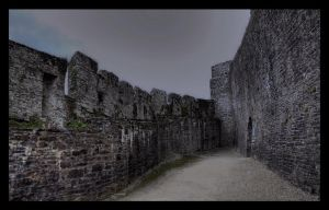 Dinefwr Castle (and grounds) I by Waeffe