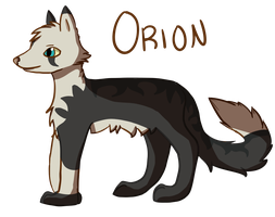 Orion by Silvaina