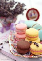 French Macaroons by theresahelmer