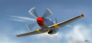 P51 Mustang by christopherjmeyer