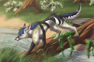 Zack on a hunt by Farbenreich