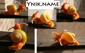 orange sea snail by Ynik-name