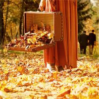 a briefcase of autumn by incolorwetrust