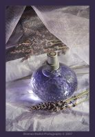 Scent Of Lavender by shamsa95
