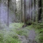 Premade Background 383 by AshenSorrow