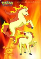 Rapidash and Ponyta by moontje