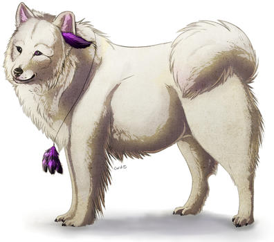 Samoyed by CordisaWire