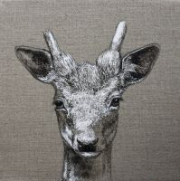 Sparkling Little Stag by LouiseMcNaught