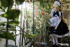 .:: A Maid Dream ::. by Masahiiro