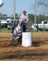 Barrel Racing Stock VIII by Twitinator