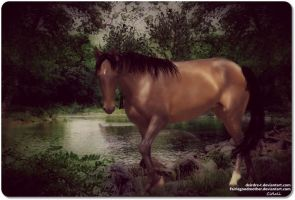 Famous Shamus 2 by JuneButterfly-stock