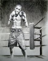 Boxer by wwitb09