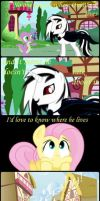 Fluttershy anecdotes by OniBlackwood