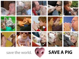 SAVE THE WORLD, SAVE A PIG by GABOGRAFICO