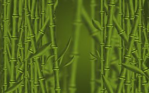 Bamboo forest by gabriela2006
