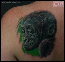 LITTLE GORILLA 2010 by anabi