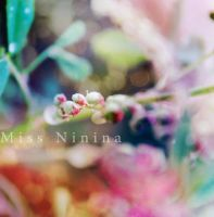 Natural Colors by Miss-NiNiNa