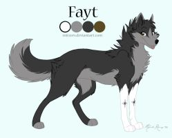 Fayt Reference Sheet 2008 by mirzers