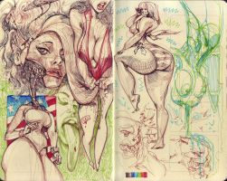 Sketchbook 2012 - 1 by biz20