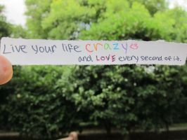 live your life crazy :original by wynnewong