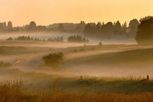 Road in the mist by amisiux