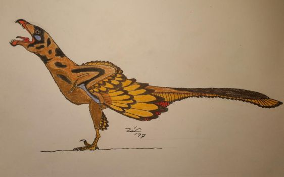 Jeholornis prima  by TheDubstepAddict