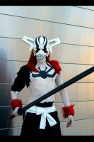 Full Hollow Ichigo Cosplay by Elffi
