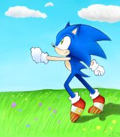 Sonic at a field by Kuryel