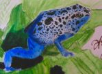 Blue Poison Dart Frog by Fabulous009