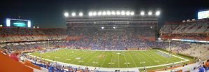 Saturday Night in the Swamp by zachn