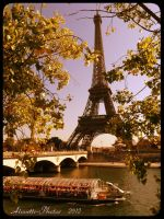 on the river Seine under the Eiffel Tower by Alouette-Photos