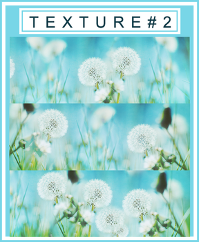 Texture Pack #2 By Ri by phuonganh179
