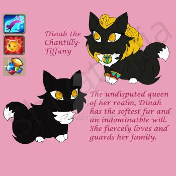 Dinah the Chantilly-Tiffany:Castle Cats by Aoea