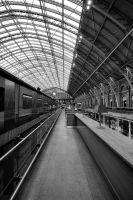 The Arch of St Pancras by daliscar