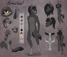 Shadow - anthro form ref sheet by gonedreamer